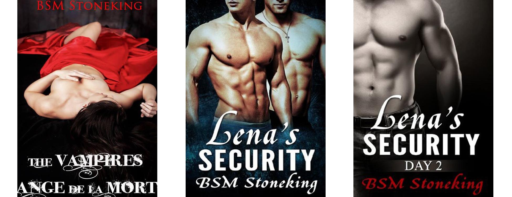 BSM Stoneking Book Banner